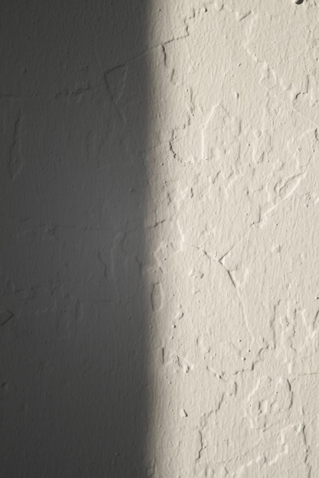 pexels-jill-burrow-5987195